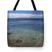 Clear Water And Coral Tote Bag