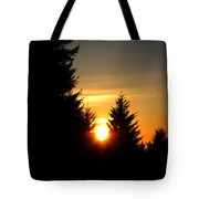 Clearing The Trees In The Morning Tote Bag