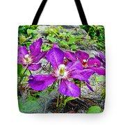Clematis Abby Aldrich Rockefeller Garden Tote Bag