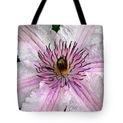 Spectacular Pink Clematis Tote Bag