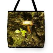 Cliff Hanger Tote Bag