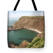 Cliffs On Grand Manan Island Tote Bag