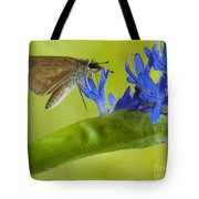 Climb Up For Lunch Tote Bag