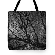 Climbing Escaped Scratches  Tote Bag
