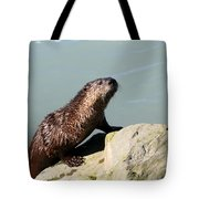 Climbing Out Tote Bag