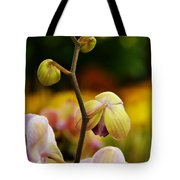 Climbing Slowly Tote Bag
