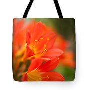 Clivia In The Conservatory Tote Bag