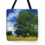 Clonmel, County Tipperary, Ireland Tote Bag