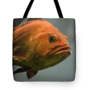 Close And Fishy Tote Bag