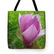 Close To The Ground Tote Bag