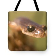 Close Up Of A California Newt Standing Tote Bag