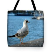 Close Up Of A Tern Next To The Thames And London Eye Tote Bag