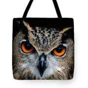 Close Up Of An African Eagle Owl Tote Bag
