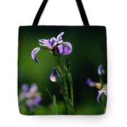 Close-up Of Blue Flag Irises Iris Tote Bag