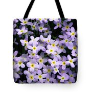 Close-up Of Bluet Flowers Houstonia Tote Bag