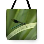 Close-up Of Dragonfly Perched On Leaf Tote Bag