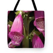 Close Up Of Foxglove Digitalis Flowers Tote Bag