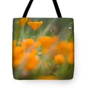 Close Up Of Orange Poppy Flowers Tote Bag
