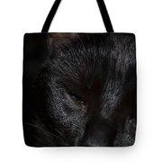Close-up Of Satin Tote Bag