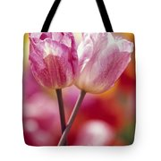 Close-up Of Tulips Tote Bag