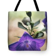 Close View Of A Balloon Flower In Bloom Tote Bag