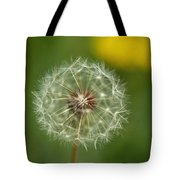 Close View Of A Dandelion Gone To Seed Tote Bag