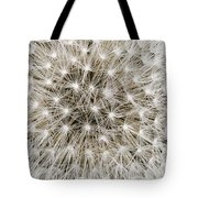 Close View Of A Dandelion Seed Head Tote Bag
