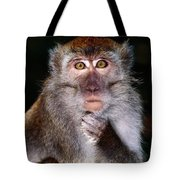 Close View Of A Long-tailed Macaque Tote Bag
