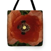 Close View Of A Poppy Tote Bag