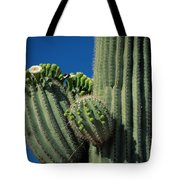Close View Of A Saguaro Cactus Saguaro Tote Bag