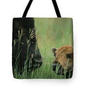 Close View Of An American Bison Tote Bag