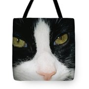 Close View Of Black And White Tabby Cat Tote Bag