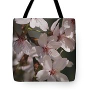 Close View Of Cherry Blossoms Tote Bag