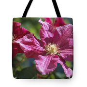 Close View Of Clematis Flowers Tote Bag