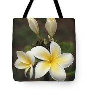 Close View Of Frangipani Flowers Tote Bag