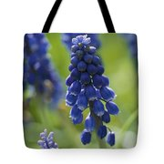Close View Of Grape Hyacinth Flowers Tote Bag