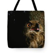 Close View Of Owl Near A Tree Trunk Tote Bag