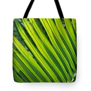 Close View Of Palm Fronds Tote Bag