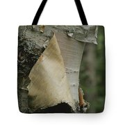 Close View Of Paper-birch Bark Tote Bag
