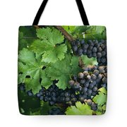 Close View Of Red Grapes On The Vine Tote Bag