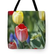 Close View Of Spring Tulips In Bloom Tote Bag