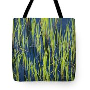 Close View Of Water Grasses Growing Tote Bag