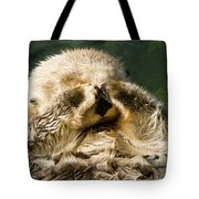 Closeup Of A Captive Sea Otter Covering Tote Bag