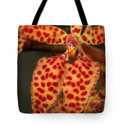 Closeup Of An Orchid, Renanthera Twin Tote Bag