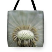 Closeup Of Dandelion Seed Head Tote Bag