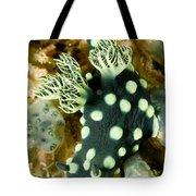 Closeup Of Nudibranch Nembrotha Tote Bag