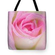 Closeup Pink Rose Tote Bag