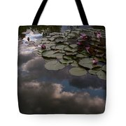 Clouded Pond Tote Bag