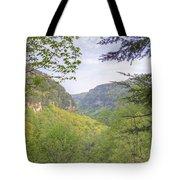 Cloudland Canyon Tote Bag