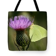 Cloudless Sulfur Butterfly On Bull Thistle Wildflower Tote Bag
